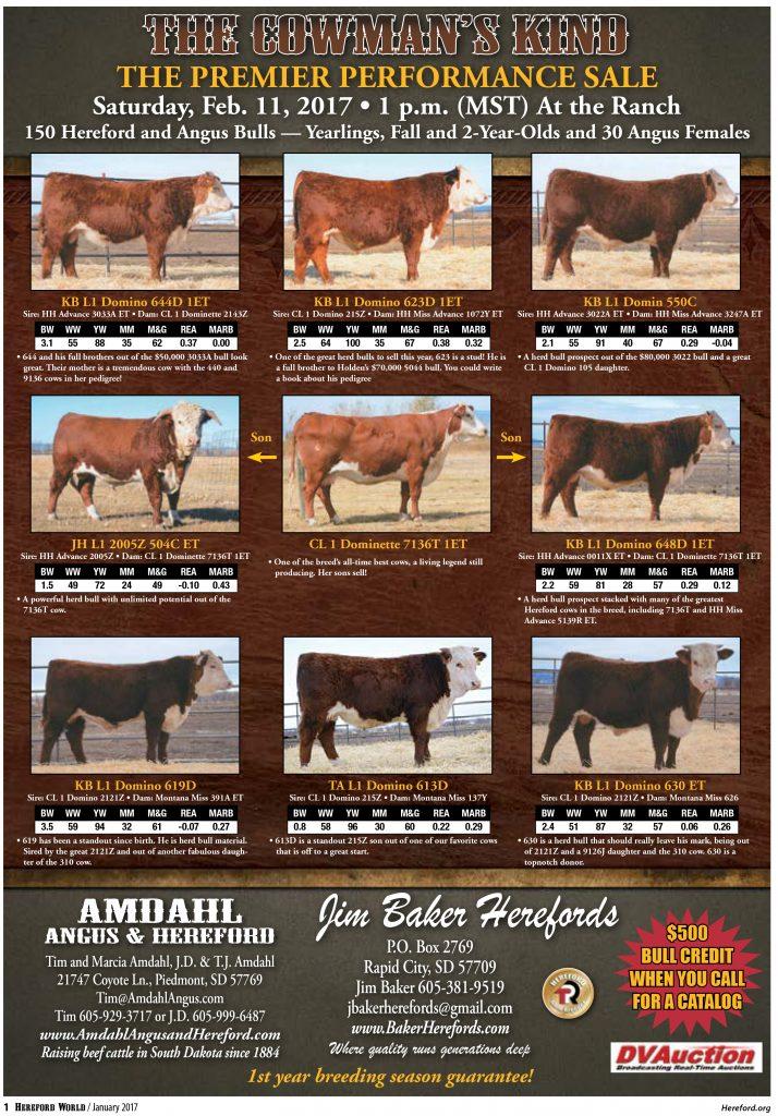 Amdahl Baker Sale