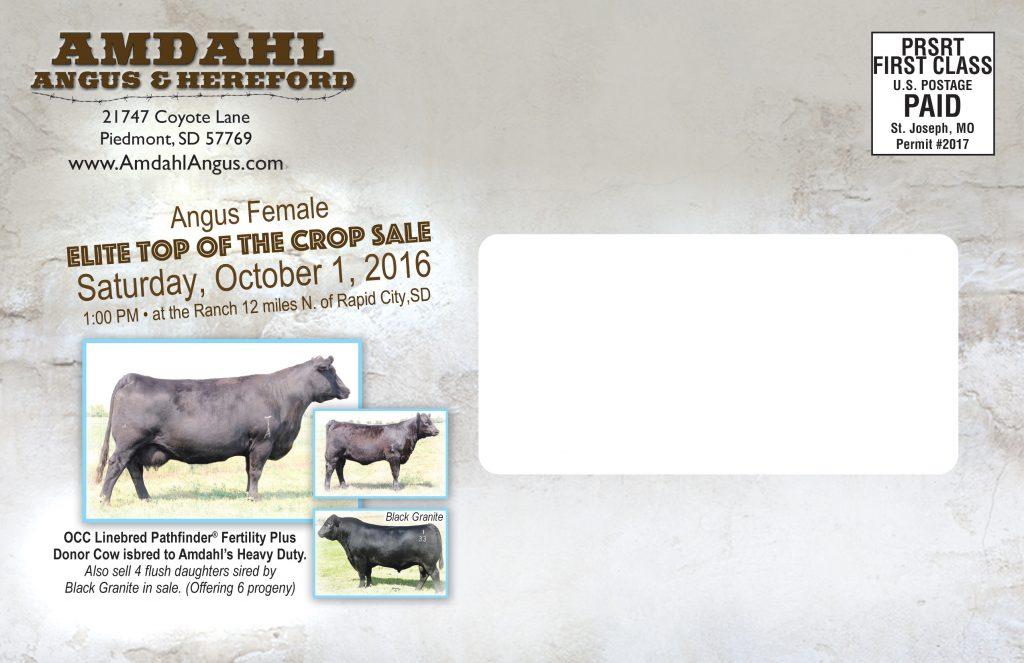 Amdahl Sale October 2016