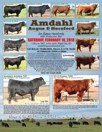 Amdahl Bull Sale Flyer